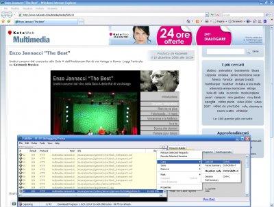 Save Flash Video Tutorial 04